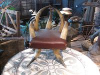 Child's Antique Horn Chair