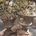 Large English Reconstituted Urns.