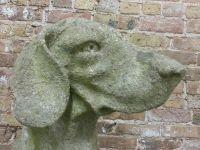 Whimsical English Hound